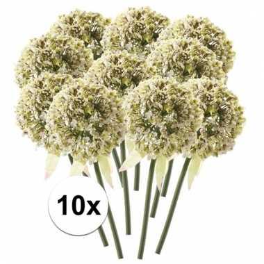 10 x kunstbloemen steelbloem witte sierui 70 cm