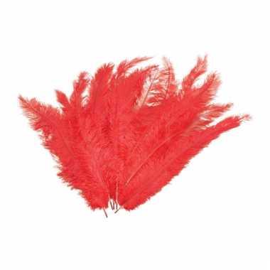 12 grote decoratie veren rood