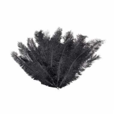 12 grote decoratie veren zwart