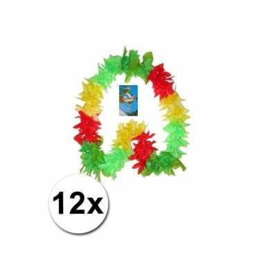 12 limburgse hawaii kransen