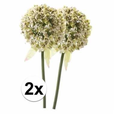 2 x kunstbloemen steelbloem witte sierui 70 cm
