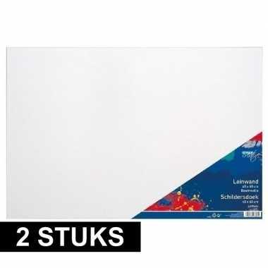2x luxe canvas doeken om te schilderen 40 x 60 cm