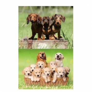 3d koelkast magneetjes met hondjes