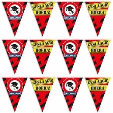3x geslaagd/afgestudeerd puntvlaggenlijn/slinger waarschuwingsbord 10