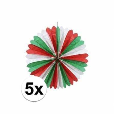 5x waaier rood/wit/groen 60 cm