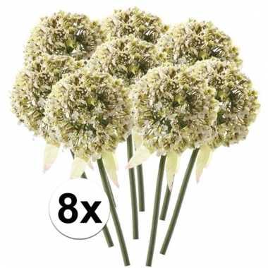 8 x kunstbloemen steelbloem witte sierui 70 cm