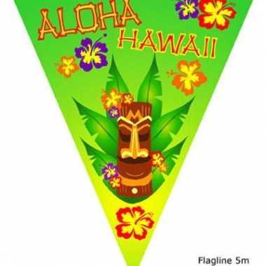 Aloha vlaggenlijn hawaii 5 meter