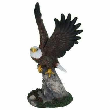 Amerikaanse zeearend decoratie beeldje 19 cm