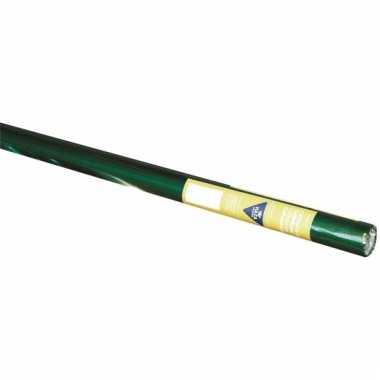 Cadeaufolie groen/goud 80 cm
