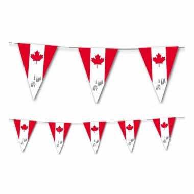 Canadese vlaggenlijn 3,5 meter