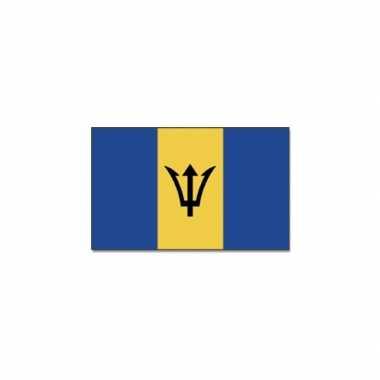Caribische vlag barbados