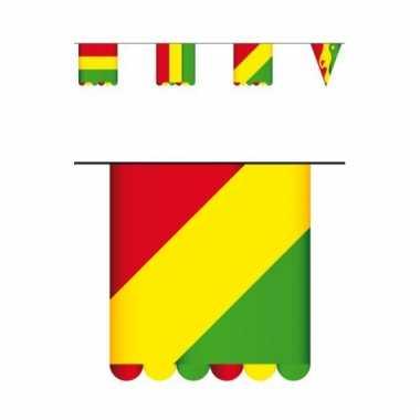 Carnaval thema vlaggenlijn karton 3 meter