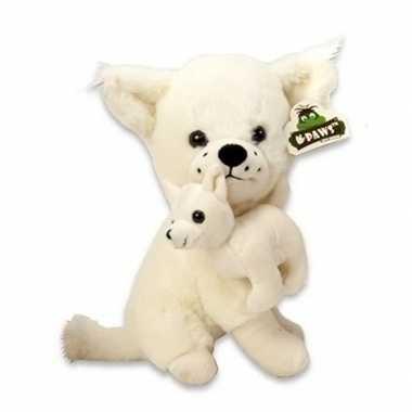 Chihuahua knuffel van pluche wit 36 cm