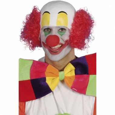 Clowns pruik bassie