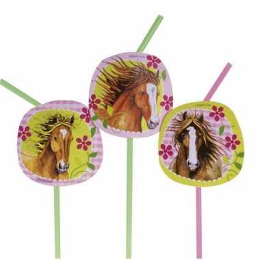 Feest rietjes met paarden thema