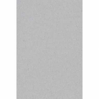 Feest versiering licht zilver grijze tafelkleed 137 x 274 cm papier