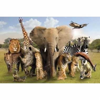 Fotografische poster wilde dieren