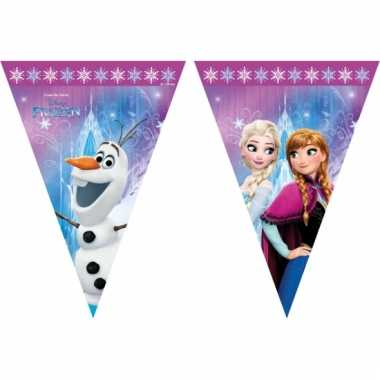Frozen kinderfeestje slingers 2 meter