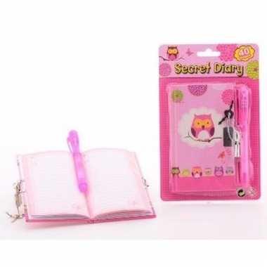 Geheim dagboek roze voor meisjes
