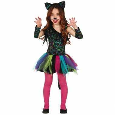 Gekleurd katten pakje voor meisjes