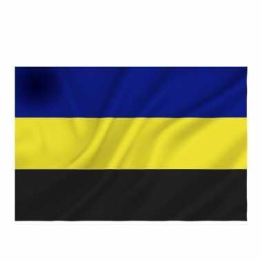 Gelderlandse vlag