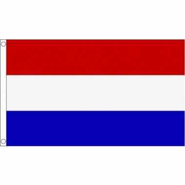 Gevelvlag nederland 150 x 240 cm