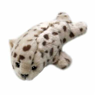 Gewone zeehond knuffeldier 21 cm