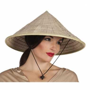 Japanse stro hoed met punt