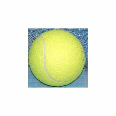 Jumbo tennisballen xl 20 cm