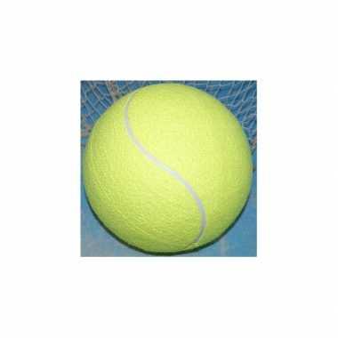 Jumbo tennisballen xxl 22 cm