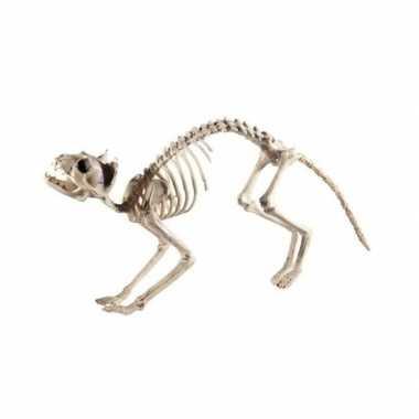 Kat/poes skelet van plastic 60 cm