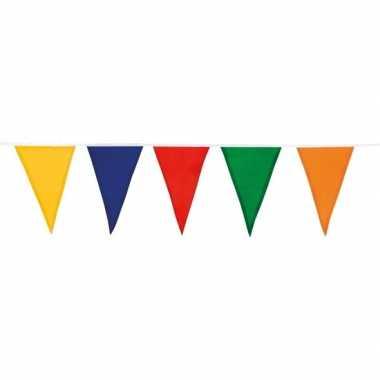 Katoenen vlaggenlijn gekleurd 10 meter