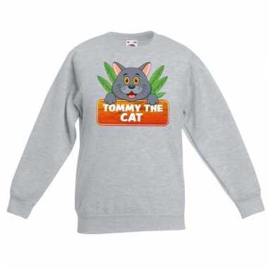 Katten dieren sweater grijs voor kinderen