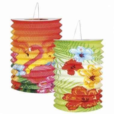 Lampionnen in hawaii thema