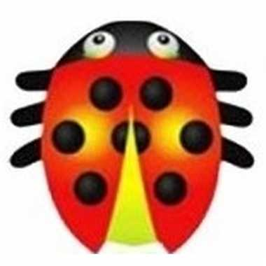 Lieveheersbeestje speel vlieger 55 x 65 cm