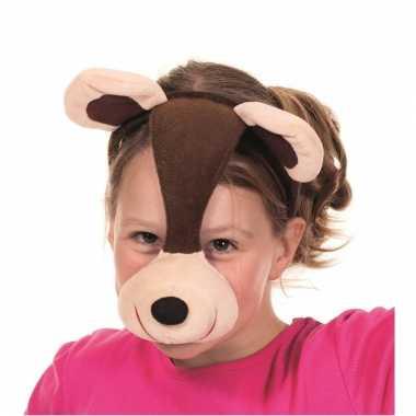 Maskers van een beer