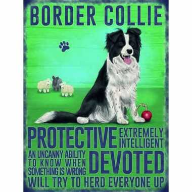 Metalen wand bord bordercollie