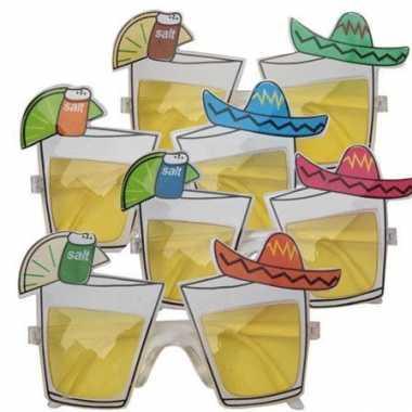 Mexico feestbril