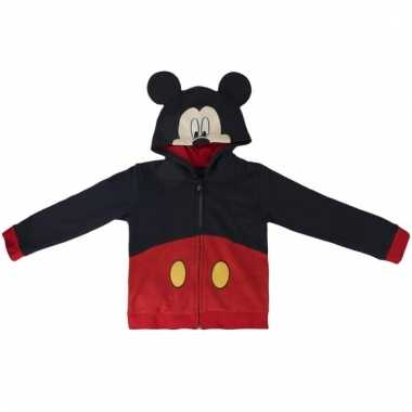Mickey mouse kinder sweater met capuchon