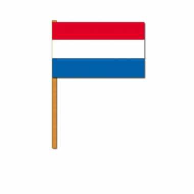 Nederland zwaaivlaggetjes