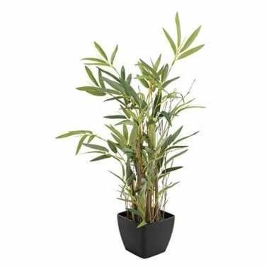 Nep bamboeplant in pot 60 cm