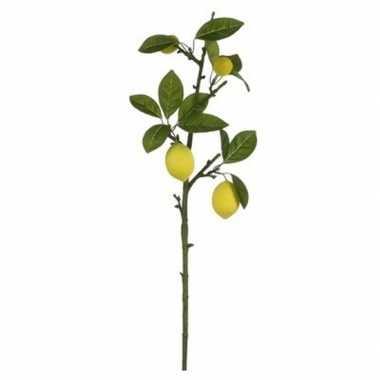 Nep planten citrus limonia citroenboom kunstbloemen takken 65 cm deco