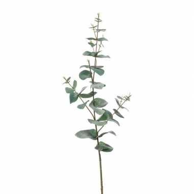 Nep planten eucalyptus kunstbloemen takken 68 cm decoratie