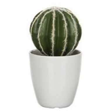 Nep planten groene echinocactus bolcactus kunstplanten 28 cm met witt