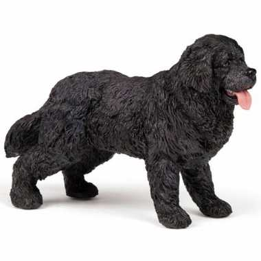 Newfoundlander hond plastic
