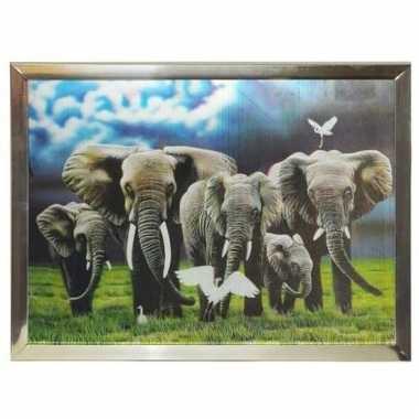Olifanten foto in lijst 3 dimensionaal