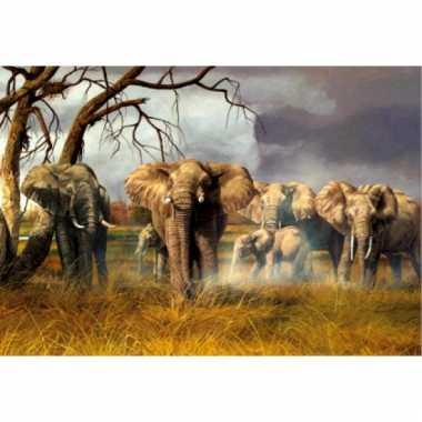 Olifanten placemats 3d