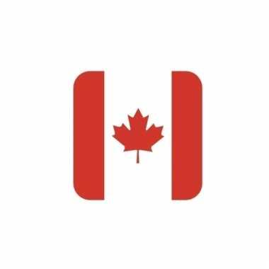 Onderzetters voor glazen met canadese kleuren 15 st