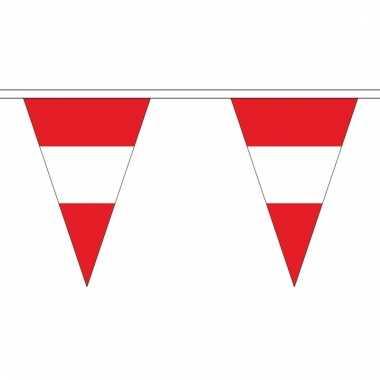 Oostenrijkse vlaggenlijn van stof 5 m