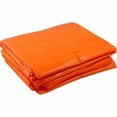 Oranje koningsdag zeilen 4 x 6 meter